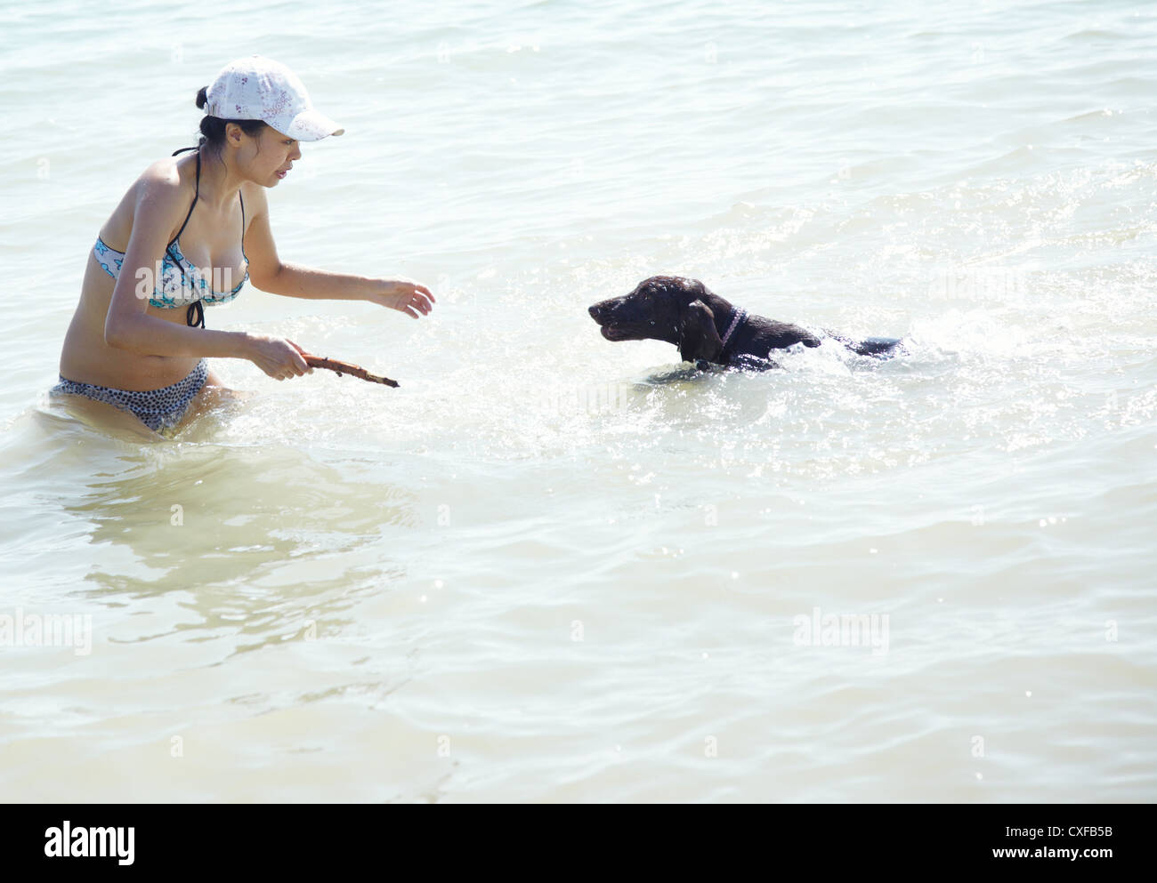 Happy lady on vacation swimming and playing with her dog. Artistic colors added - Stock Image