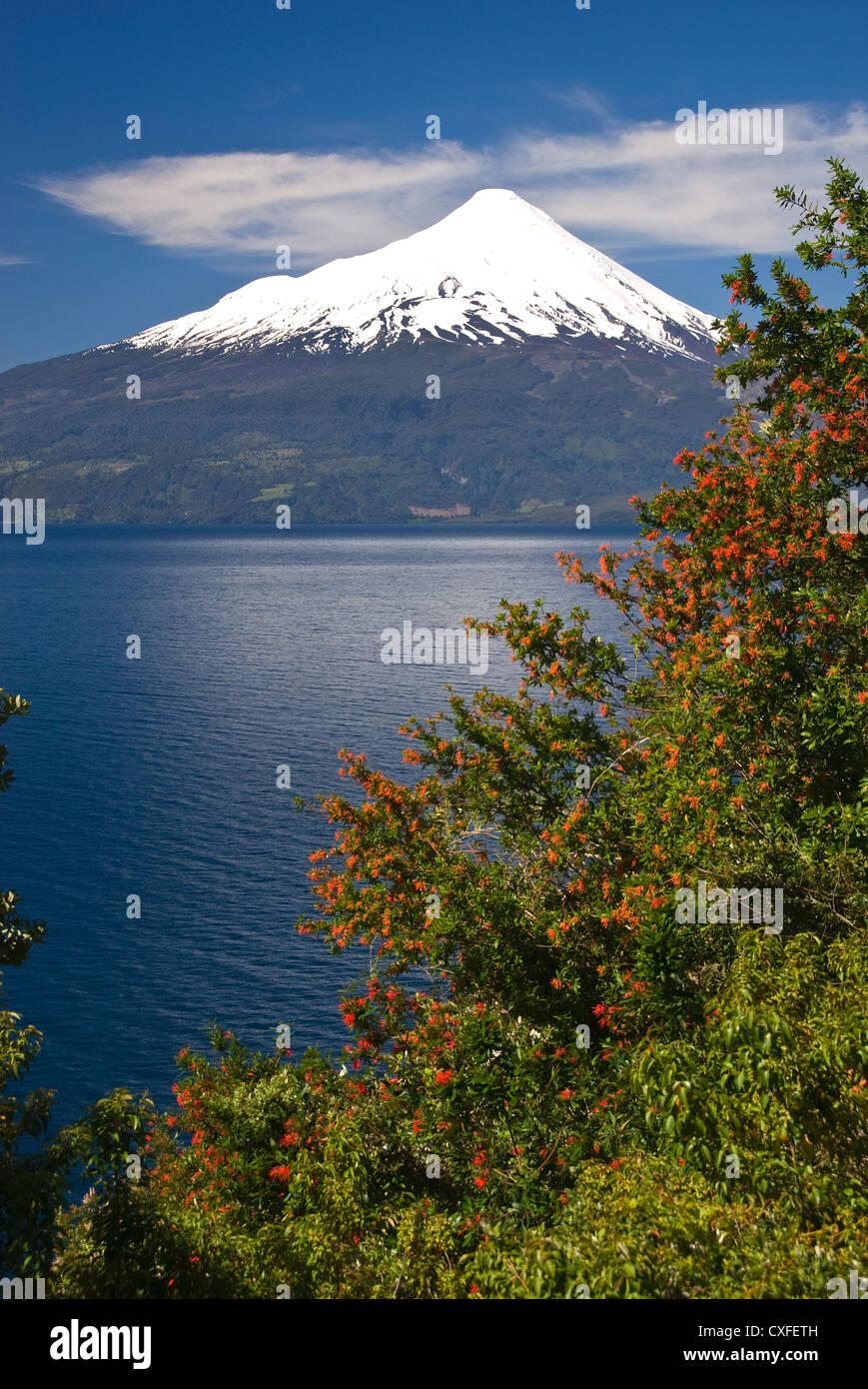 Elk198-3506v Chile, Lago Llanquihue lake, Volcan Osorno Stock Photo