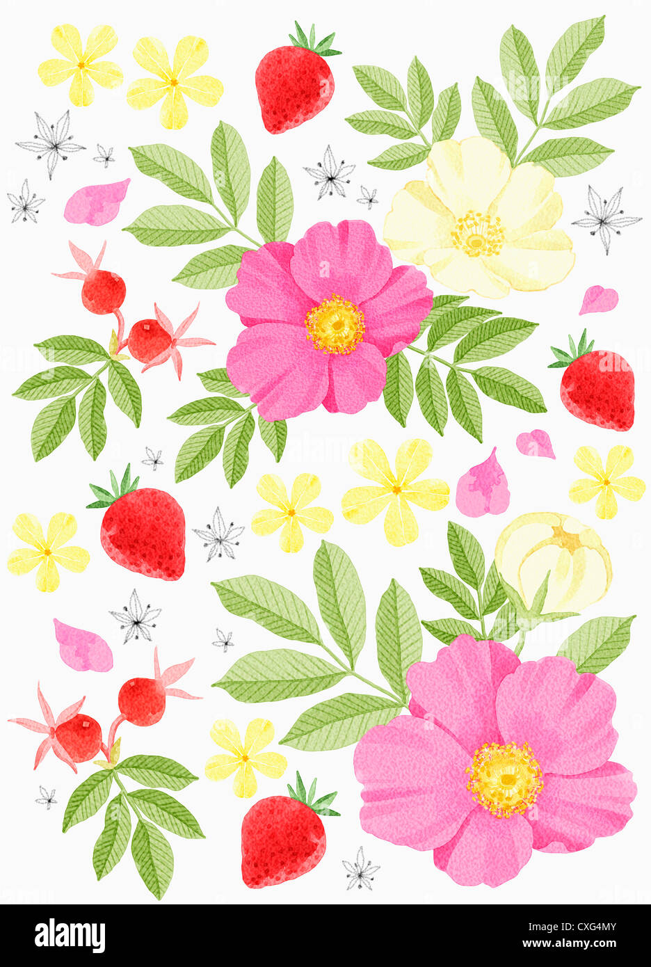 A Painting Of Pink Flower With Yellow Center Stock Photo 50756747
