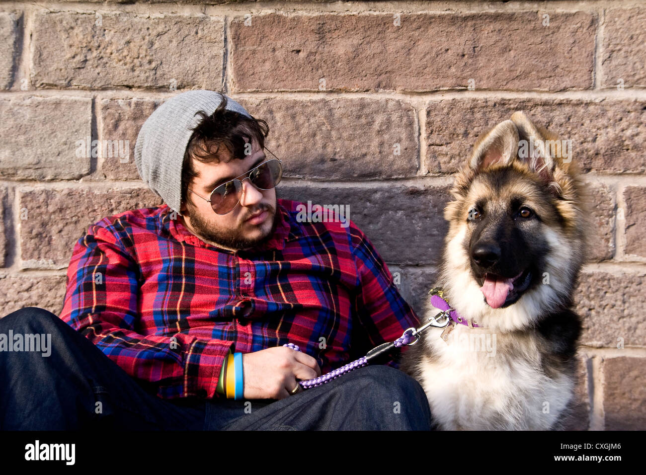 Man and his German Shepherd puppy dog sitting against a wall on a sunny day in urban Dundee,UK Stock Photo