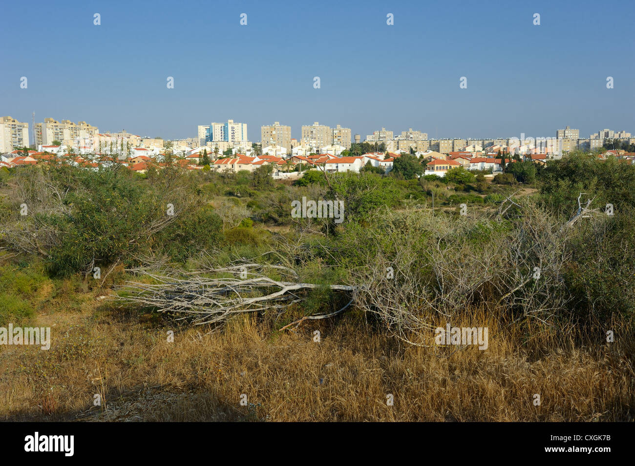 The city of Ashkelon in Israel, the view from City Park - Stock Image