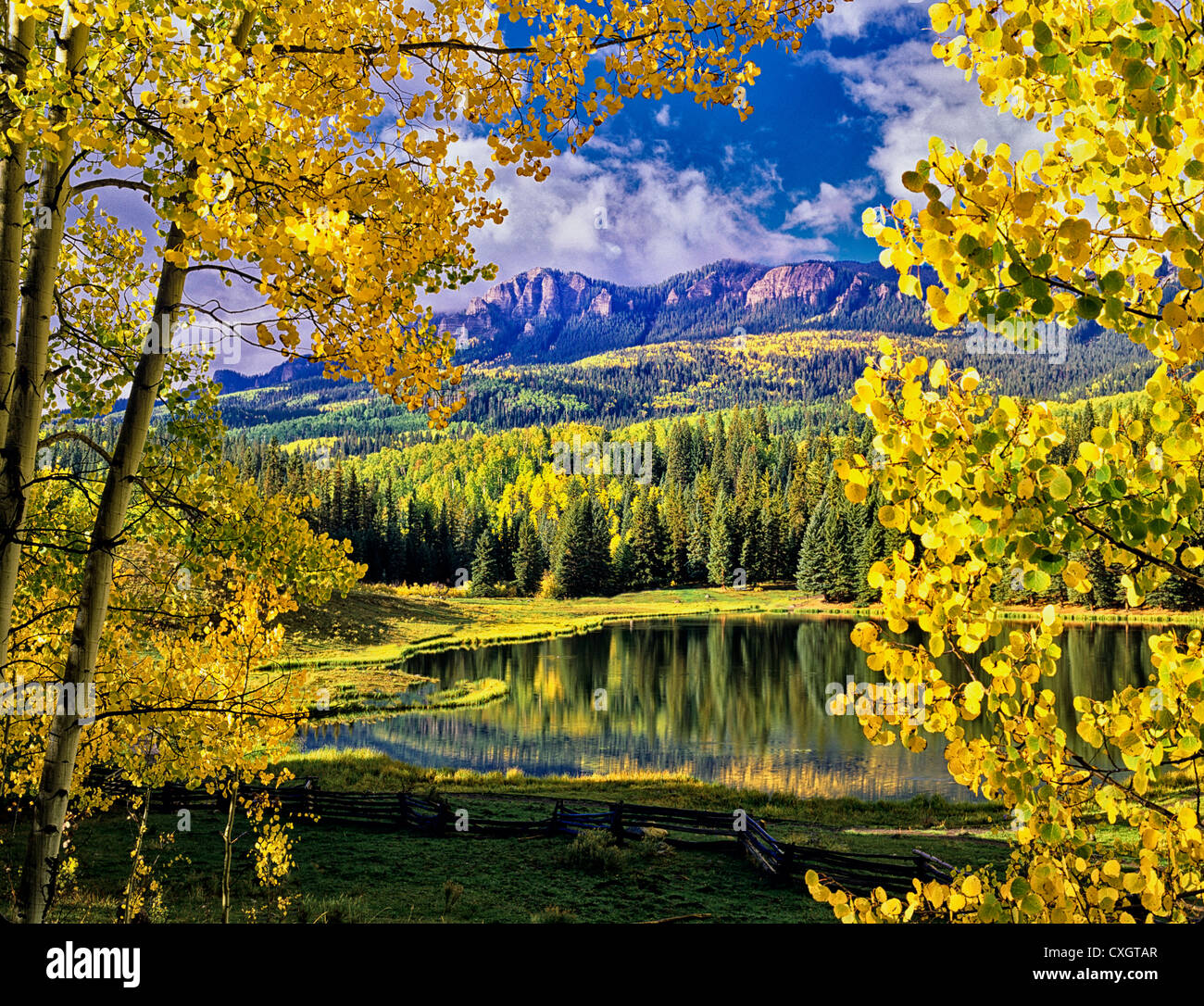 Beaver Lake with fall colored aspens. Uncompahgre National Forest, Colorado - Stock Image