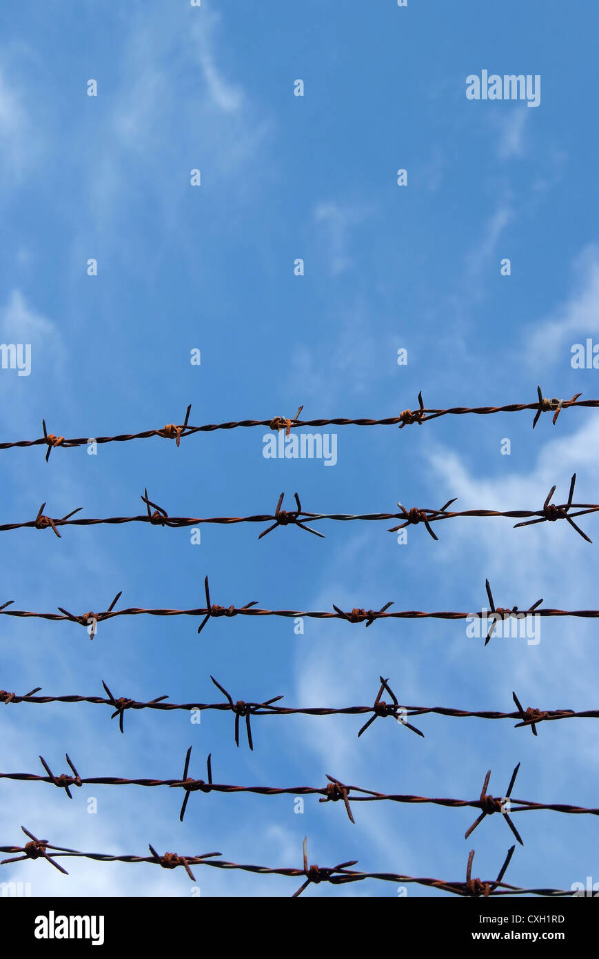 Barb Wire Fence Stock Photos & Barb Wire Fence Stock Images - Page 3 ...