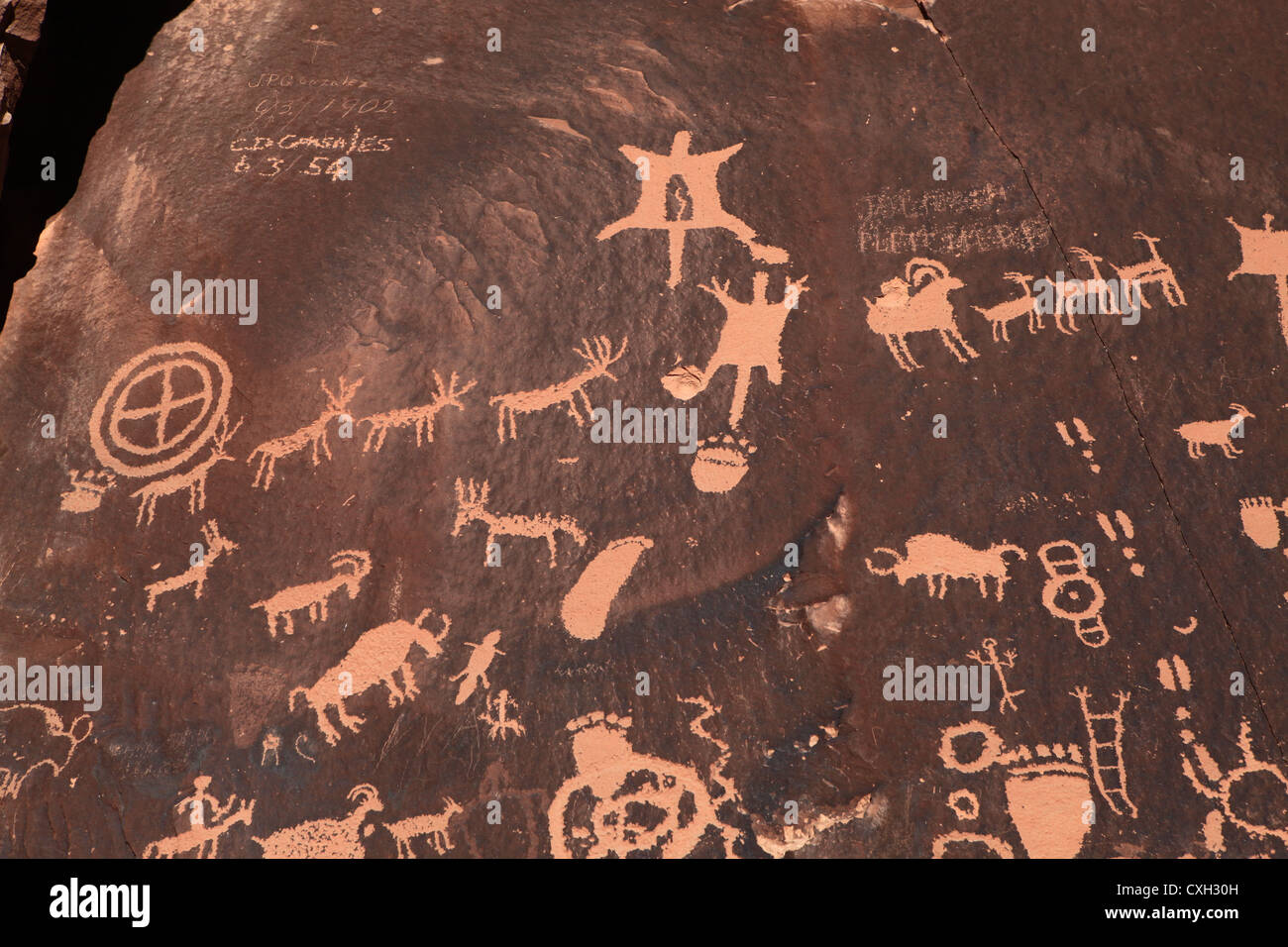Ancient Indian petroglyph on rock in Moab, Utah, USA - Stock Image
