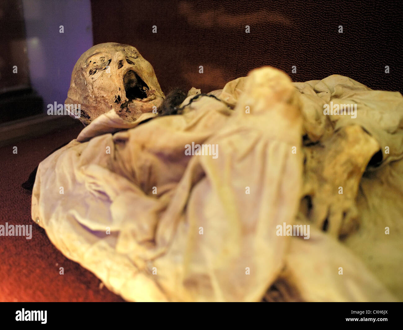 Museum of the Mummies, the most popular tourist attraction in Mexico - with over 100 mummies on display, helps to - Stock Image