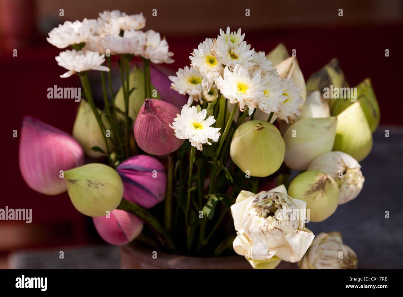 Blumen auf einem Blumenmarkt in Chiang Mai - Flowers on a Flower Market in Chiang Mai - Stock Image