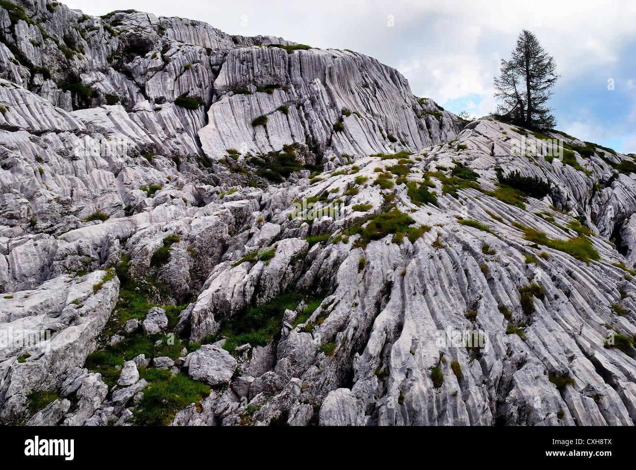 Slovenia, Triglav National Park : karst phenomena caused by the water and ice to Planina na Polju, near Mount Krn. - Stock Image