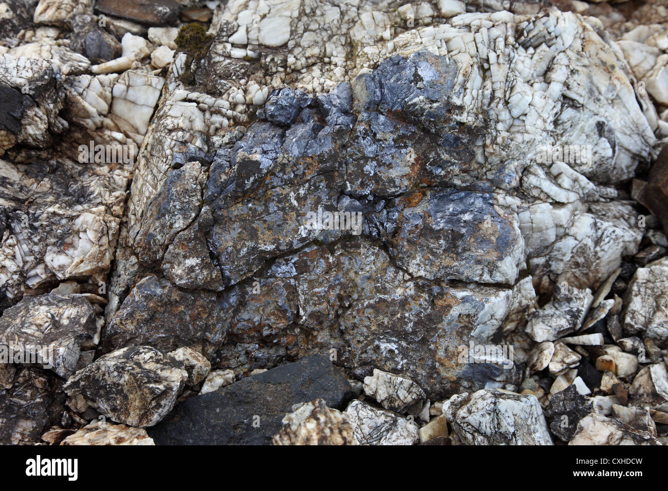 Galena (Lead Ore) Surrounded by Barytes (Barium Sulphate) Found near the Cow Green Lead Mines Teesdale County Durham - Stock Image