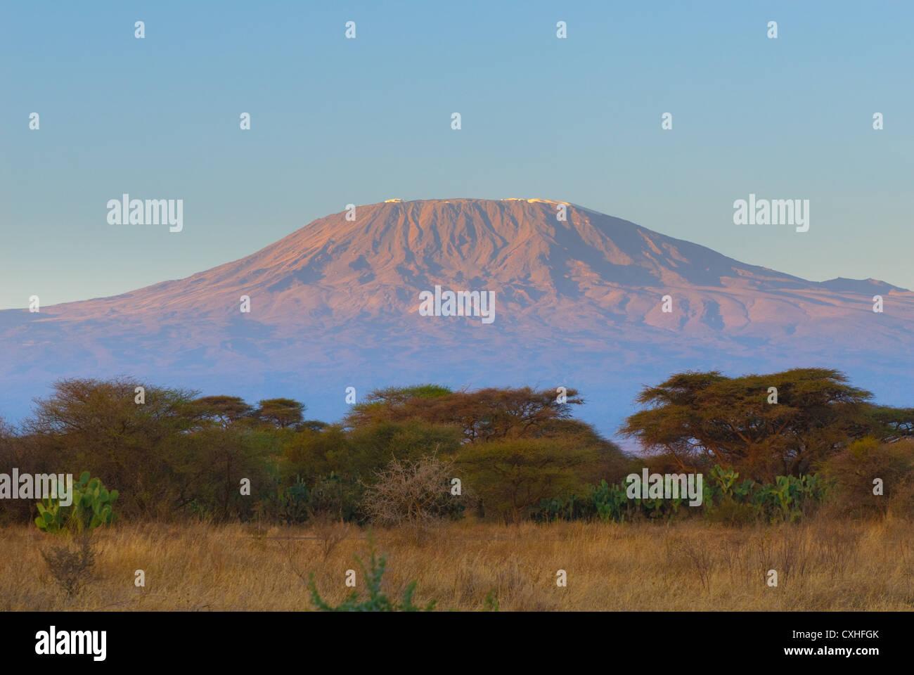 kilimanjaro mountain at the sunrise - Stock Image