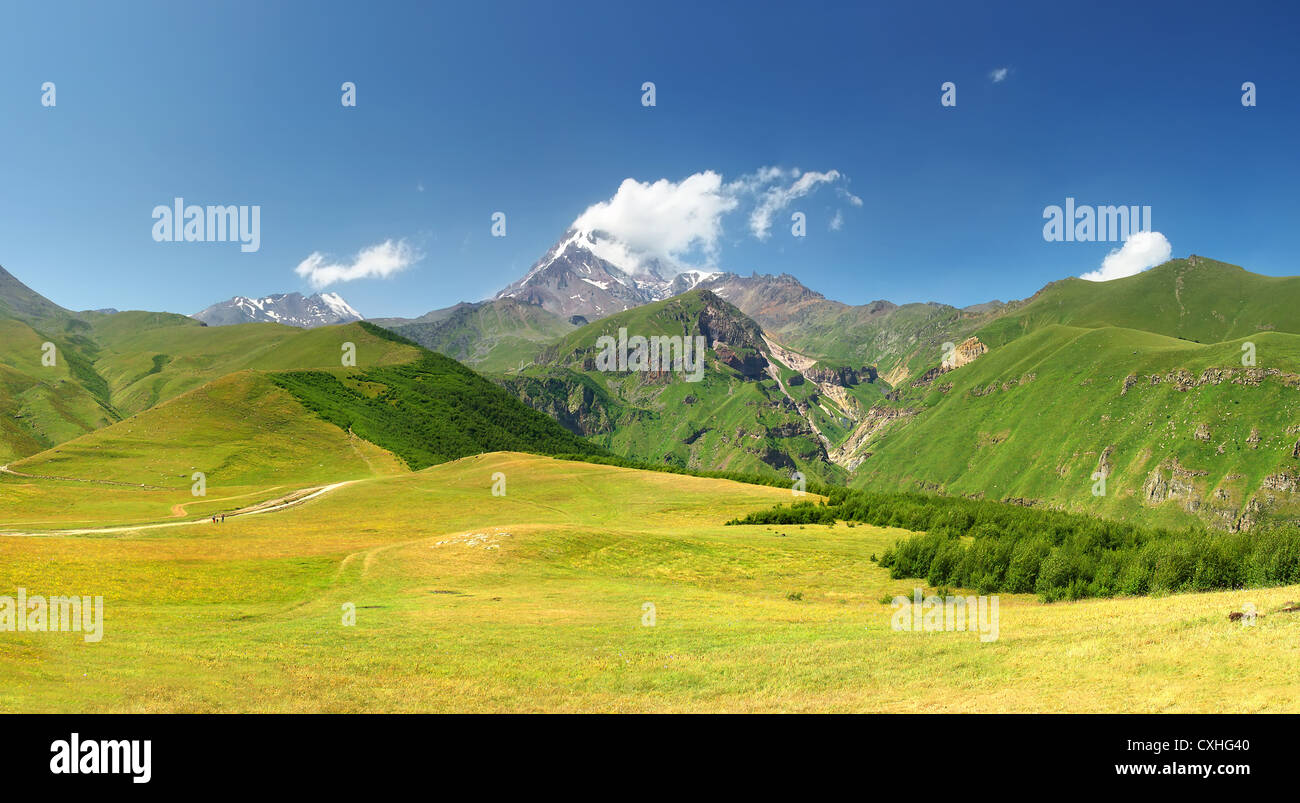 Mountain range and bright green meadow. Panoramic composition - Stock Image