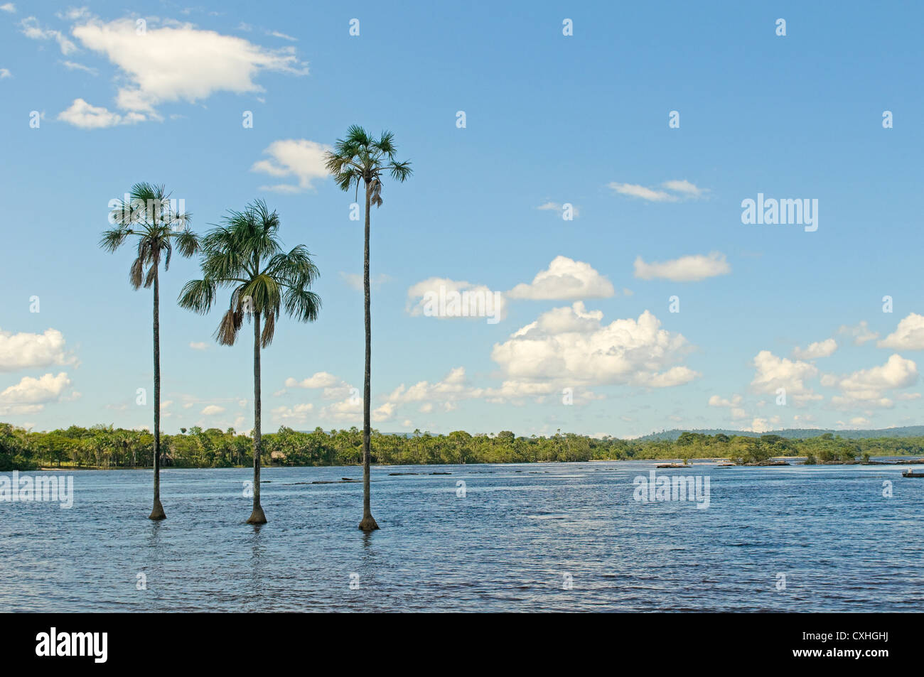 Canaima lagoon, Venezuela - Stock Image