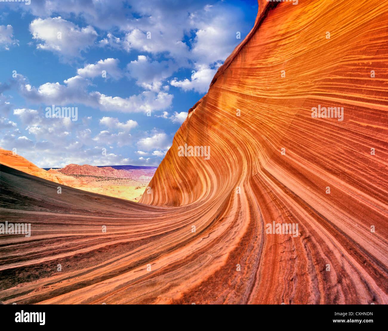 The wave, Vermillion-Cliffs Wilderness, Arizona C00039M - Stock Image