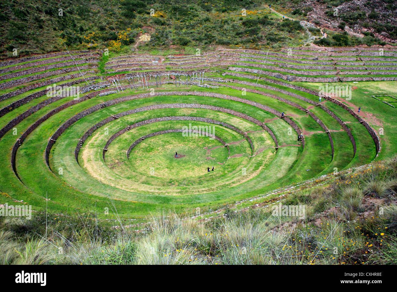 Moray, archaeological site, Cuzco, Peru - Stock Image