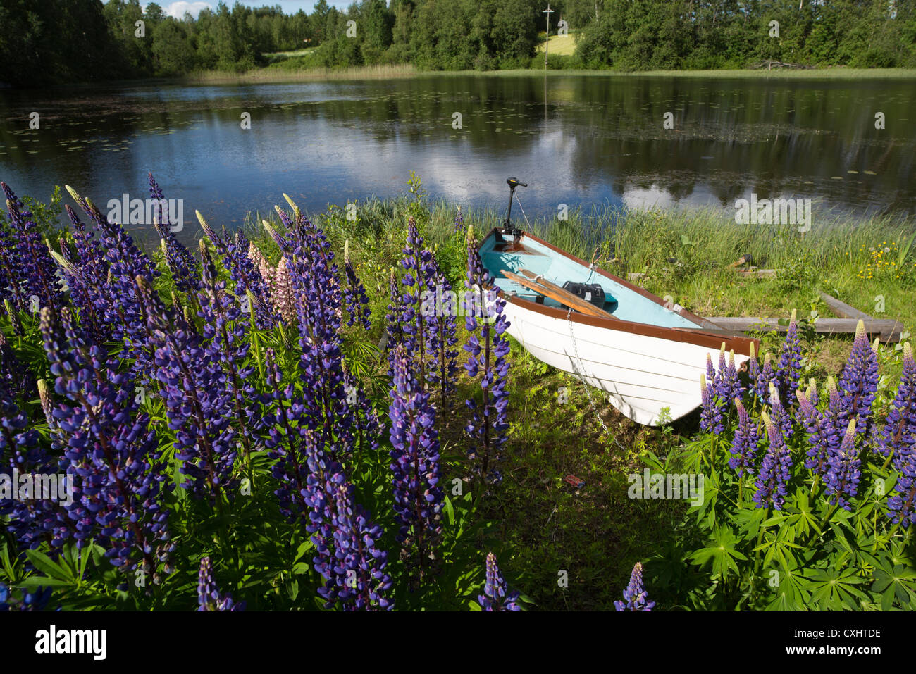 Rowboat with electric motor beached at riverbank , Finland - Stock Image