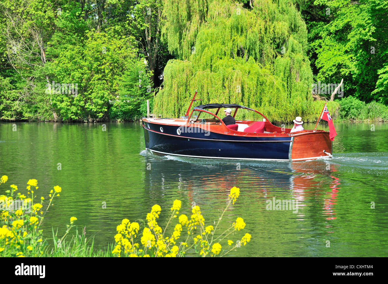 Cruising on a gentlemans motor yacht,on the  upper reaches of the Thames , Pangbourne,  near  Pangbourne lock .Berkshire - Stock Image