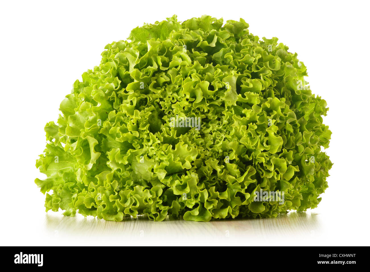 Green leaves lettuce isolated on white background - Stock Image