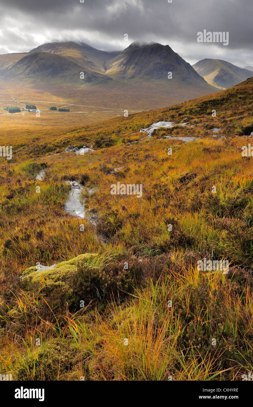 View towards Meall a' Bhuiridh and Creise from the slopes of Beinn a Chrulaiste in autumn, Glencoe, Scottish - Stock Image