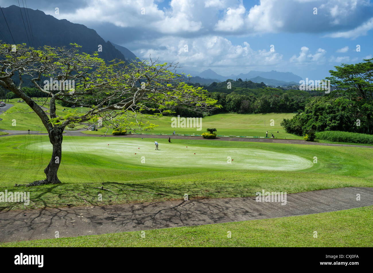 Practice putting green and driving range at Ko'olau Golf Club near Ko'olau Range in Kaneohe, Hawaii. - Stock Image