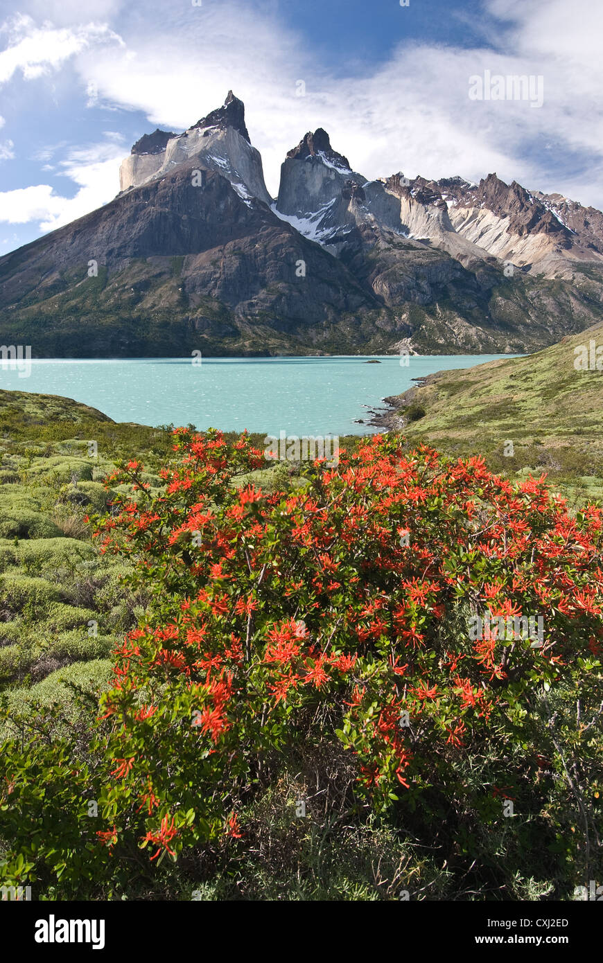 Elk198-4491v Chile, Patagonia, Torres del Paine NP, Lago Nordenskjold with Cuernos massif, Andes - Stock Image