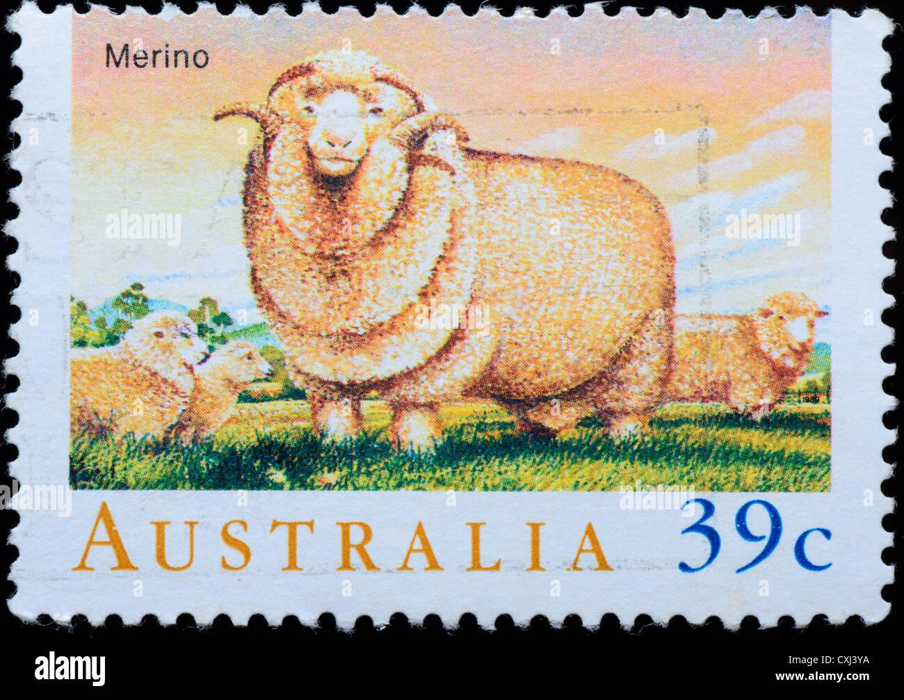 AUSTRALIA stamp shows  Merino sheep - Stock Image