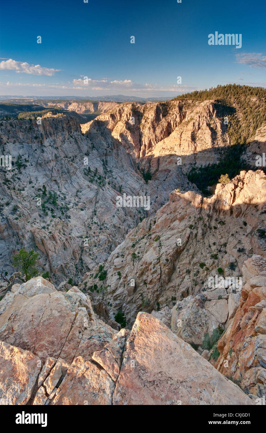 Box Death Hollow Wilderness, view at sunrise from Hells Backbone Road, Colorado Plateau, Utah, USA - Stock Image