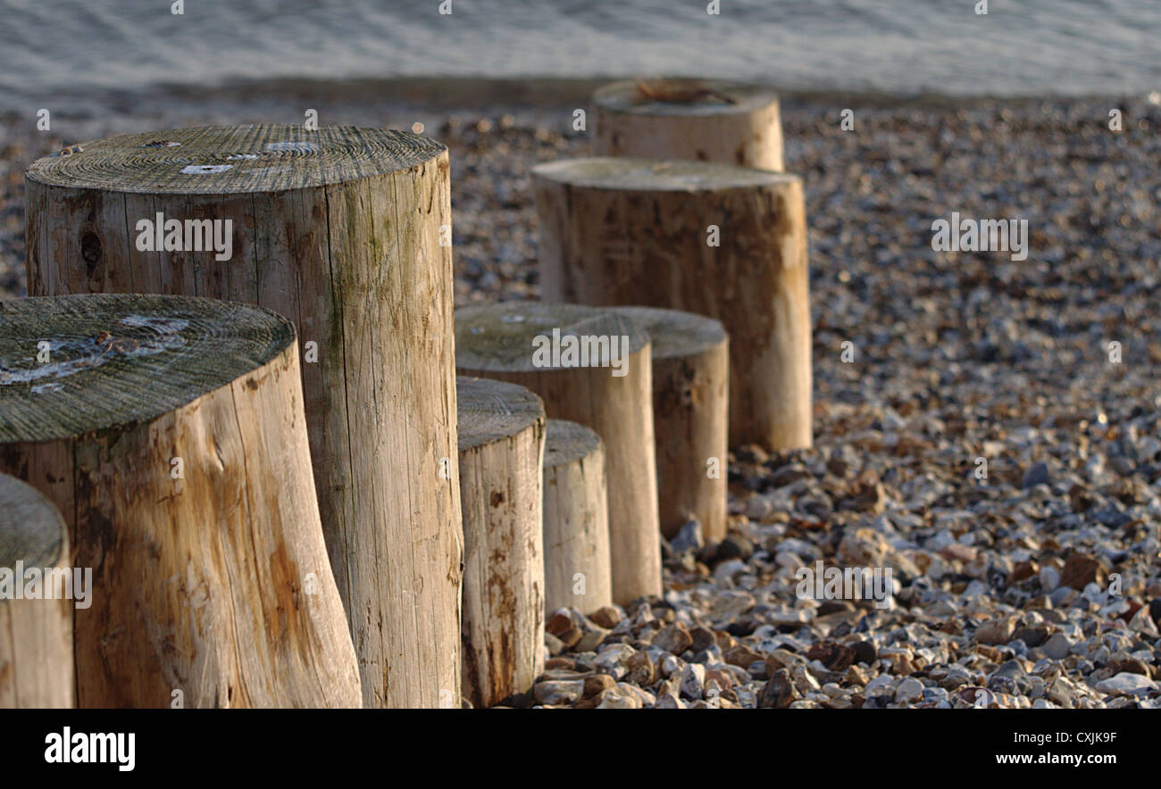 Wooden stumps towards the water at the beach - Stock Image