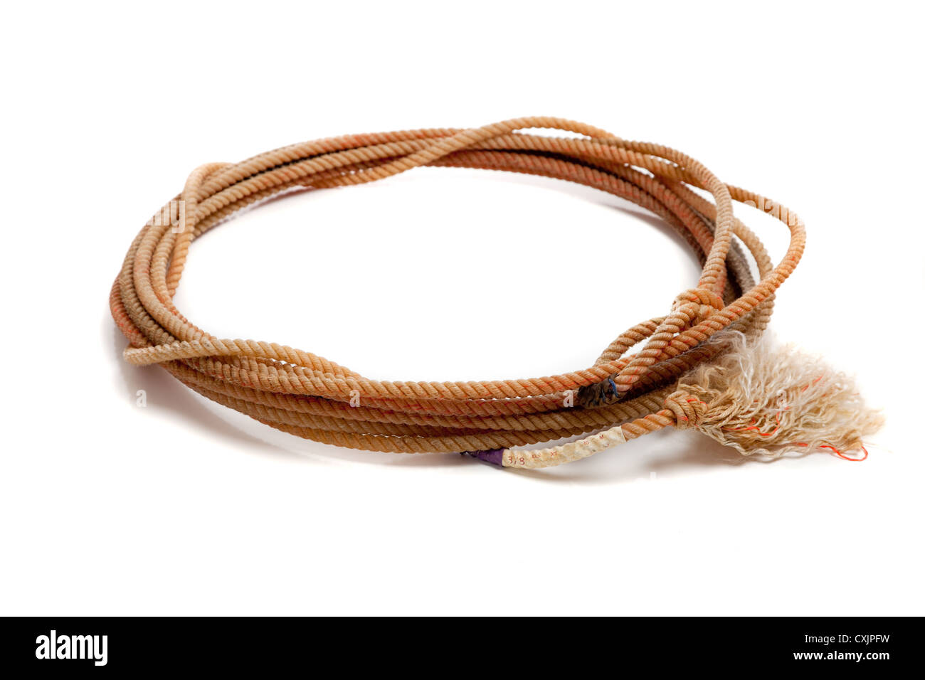 Lasso or lariat on a white background with a copy space - Stock Image
