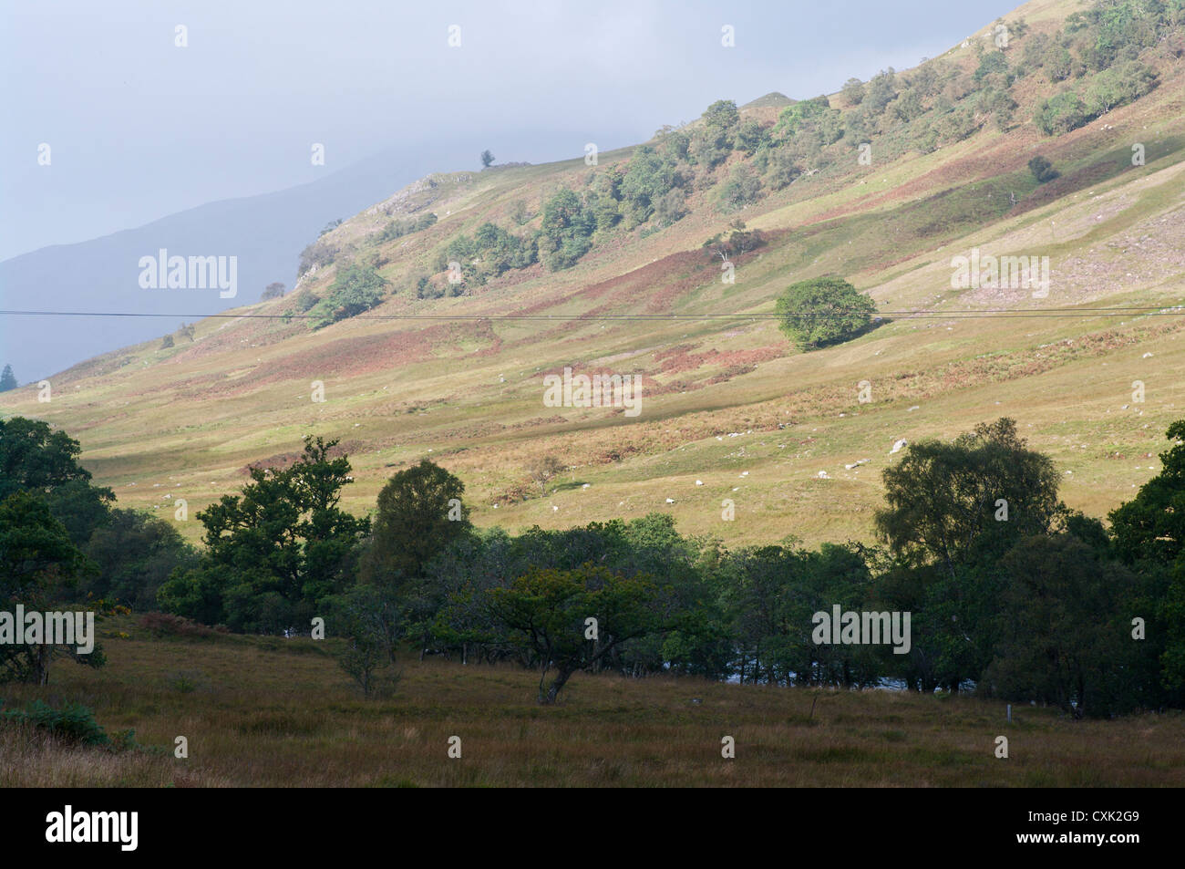 View Across Glen Orchy Argyll and Bute Scotland In The Scottish Highlands - Stock Image