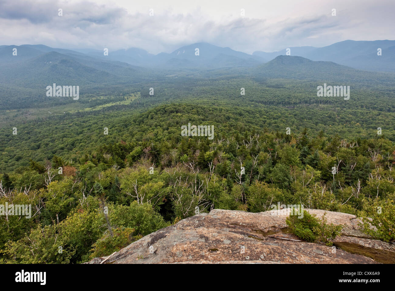 View of Mt. Marcy from Mt. Van Hoevenberg, Adirondack Mountains, New York - Stock Image
