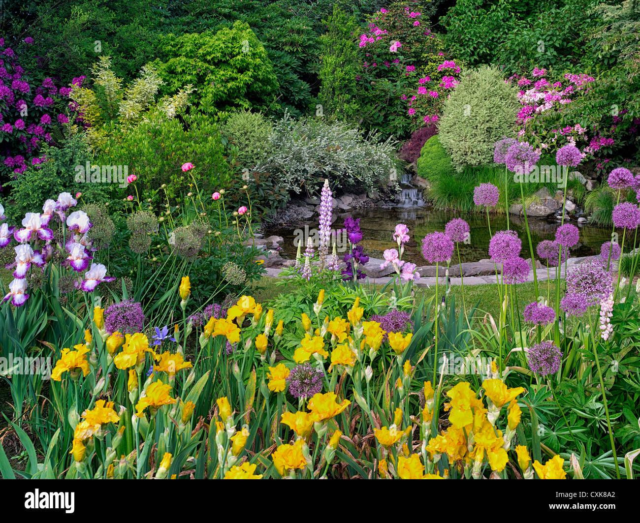 Pond with flower garden. Schrieners Iris Gardens, Salem, Oregon. - Stock Image