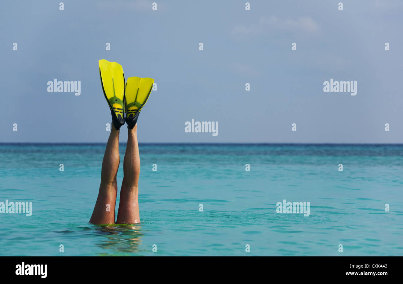 Diving on holiday - Stock Image