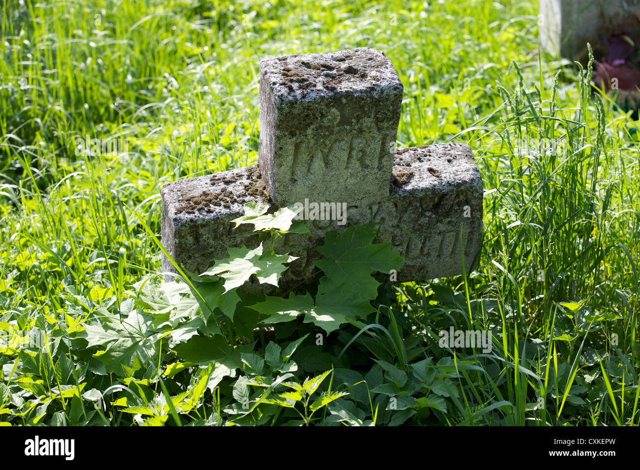 Graveyard in Plazow. Poland - Stock Image