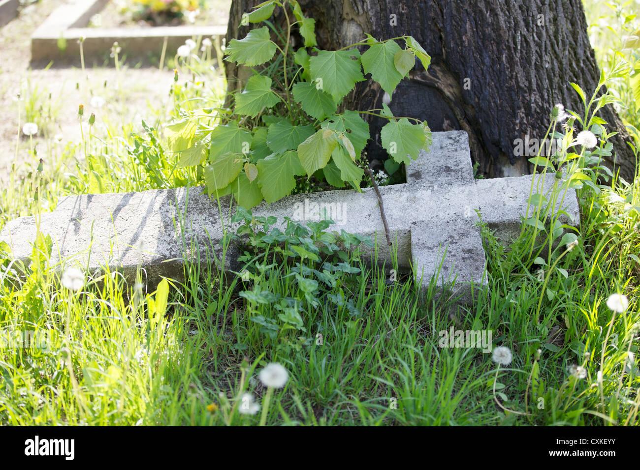 Graveyard in Plazow. Poland - Stock Image