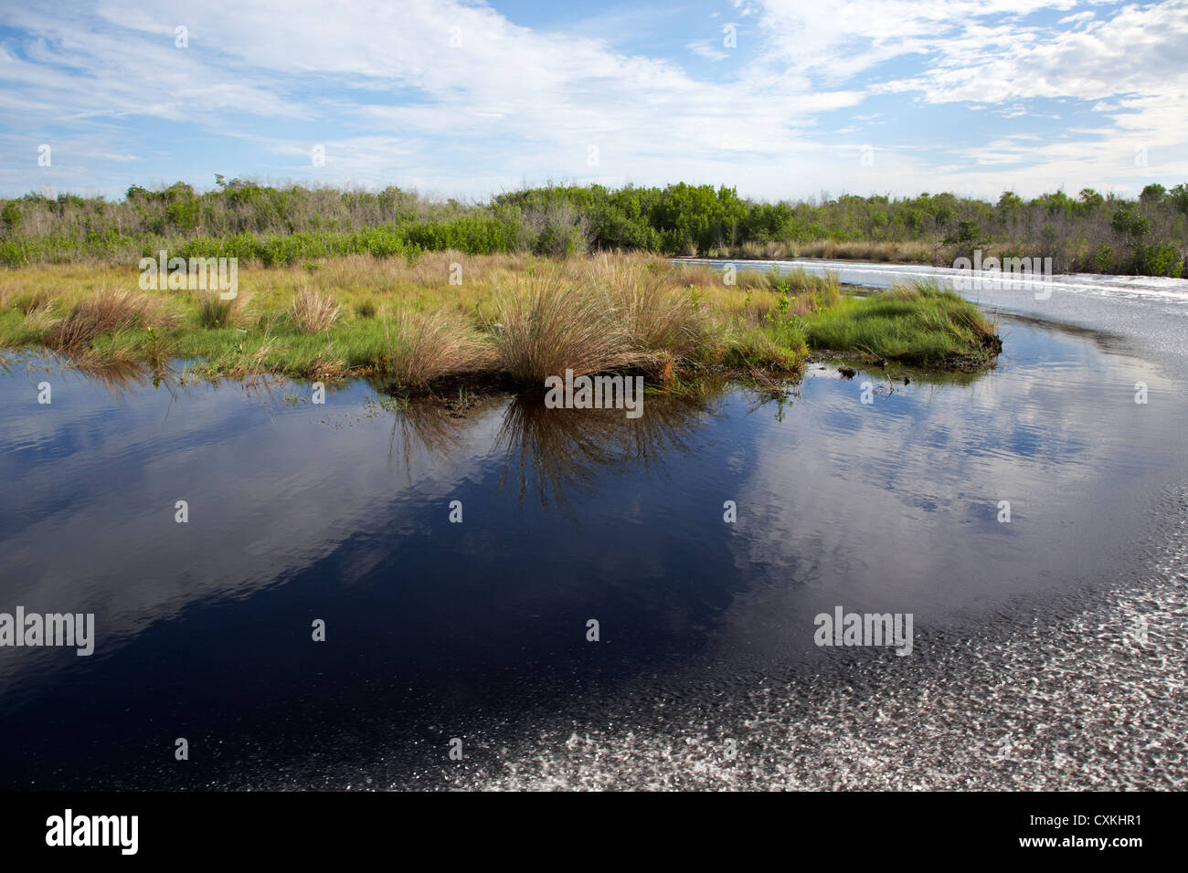 boat wake in the flooded grasslands in the florida everglades usa - Stock Image
