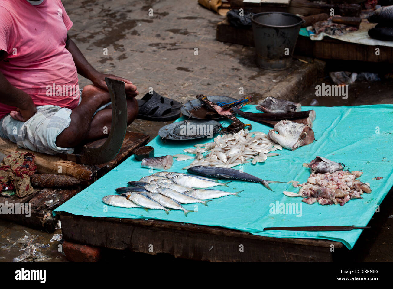 Scaling Fishes in the Street in Kolkata - Stock Image