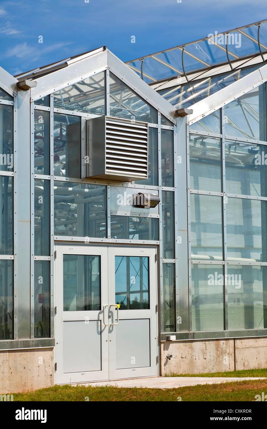 Large commercial glass greenhouse. - Stock Image