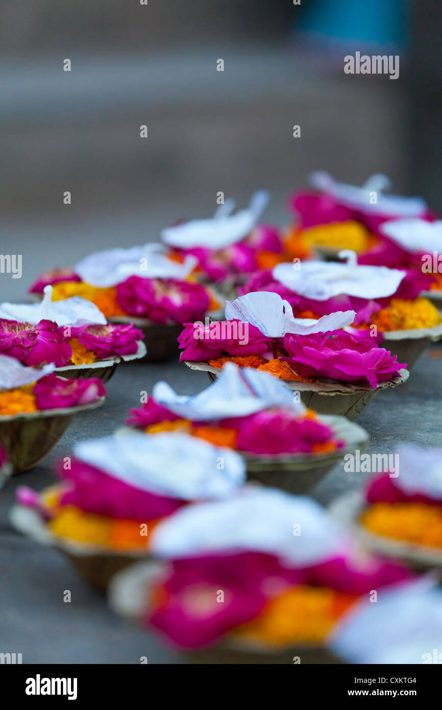 Offering Cups in Varanasi - Stock Image