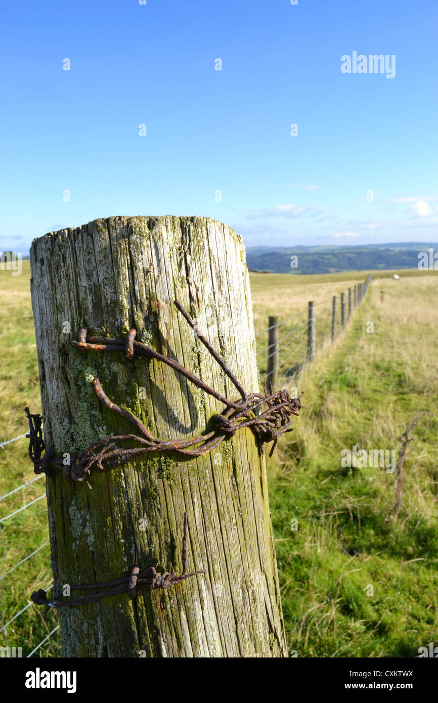 Close up of Fence post, Middleton top, Derbyshire - Stock Image