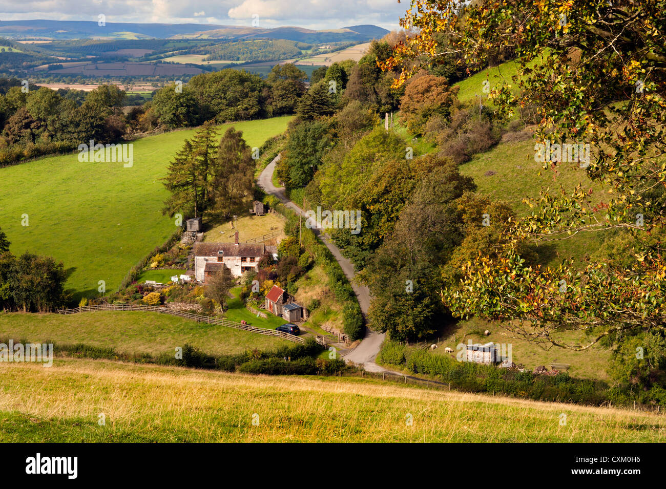 Country cottage located in the Shropshire Hills near Brown Clee Hill and Abdon village. - Stock Image