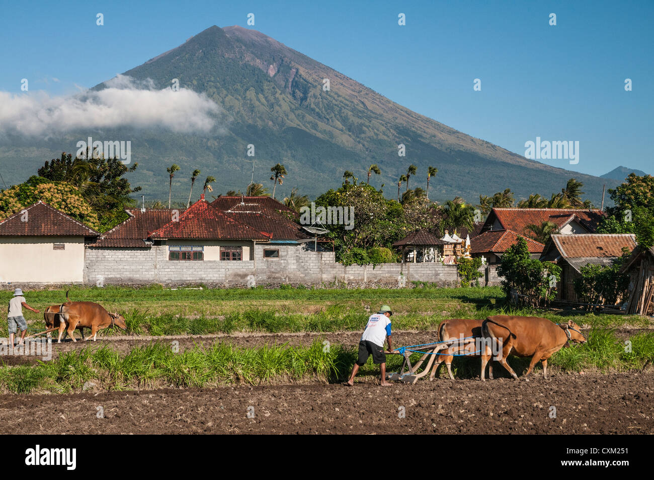 Ploughing fields near Amed with Gunung Agung volcano in the background, Eastern Bali, Indonesia. - Stock Image