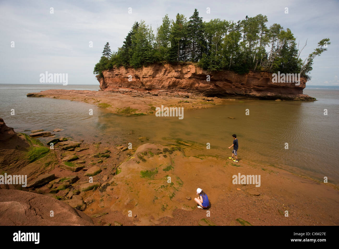 Burncoat Head In The Bay Of Fundy  The Highest Tidal Range