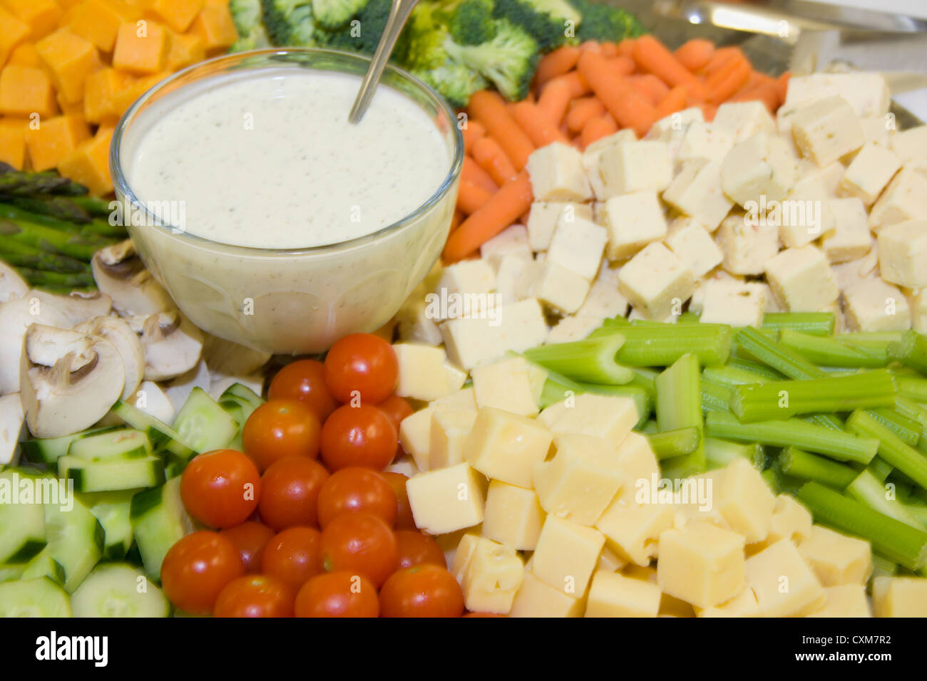 fresh cherry tomatoes, sliced mushrooms, cheese squares, carrots, celery, broccoli and ranch dressing on a party - Stock Image