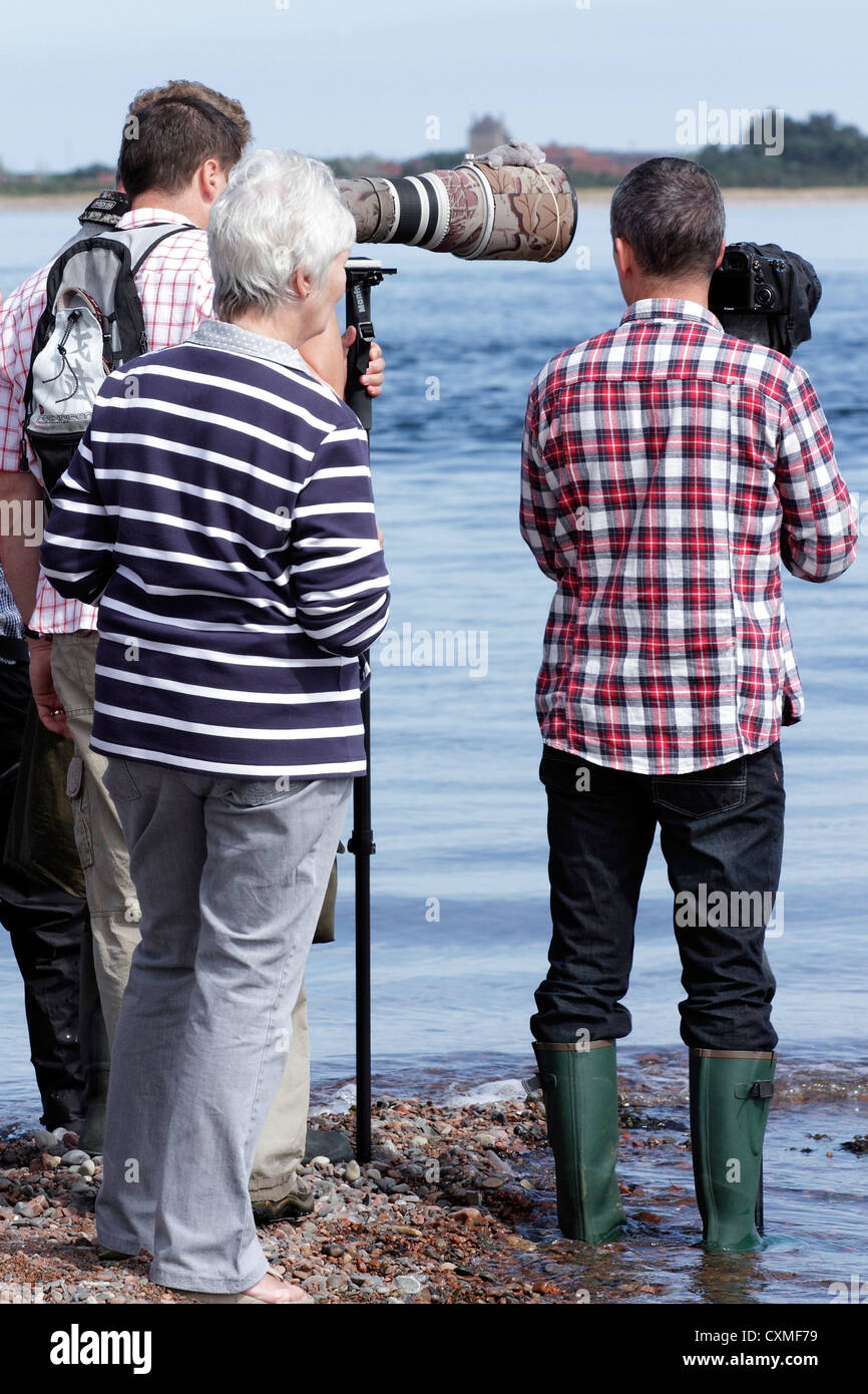 People dolphin watching on the Moray Firth. - Stock Image