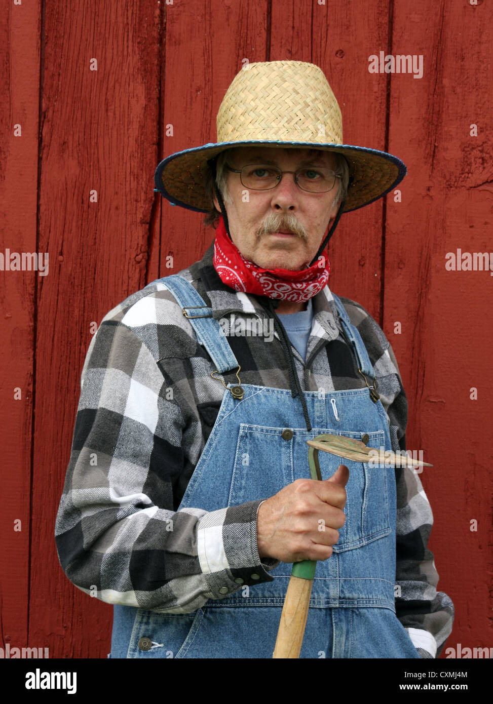 farmer holding a garden hoe wearing bib overalls with a barnboard background in vertical format - Stock Image