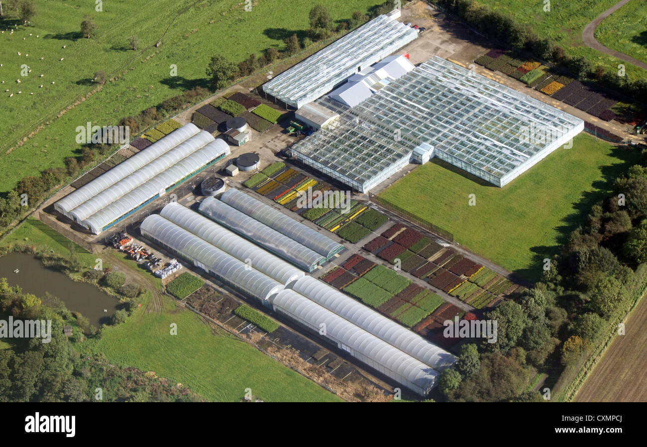 aerial view of a market gardener's greenhouses and polytunnels - Stock Image