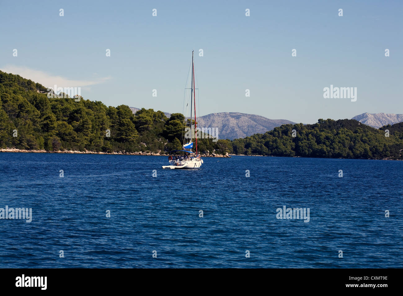 Aleppo Pine forest covering the limestone hills surrounding Polace Harbour with yacht in the bay Mljet Island Dalmatia - Stock Image