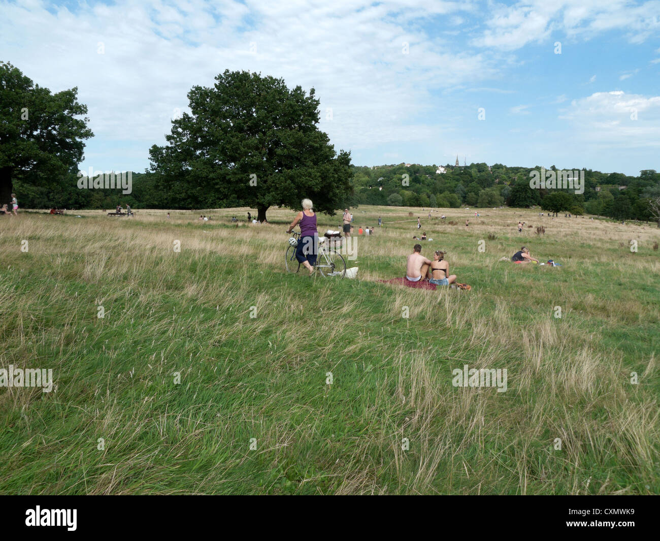 An elderly woman cyclist crossing Hampstead Heath with her bicycle in summer London NW3 England UK   KATHY DEWITT - Stock Image