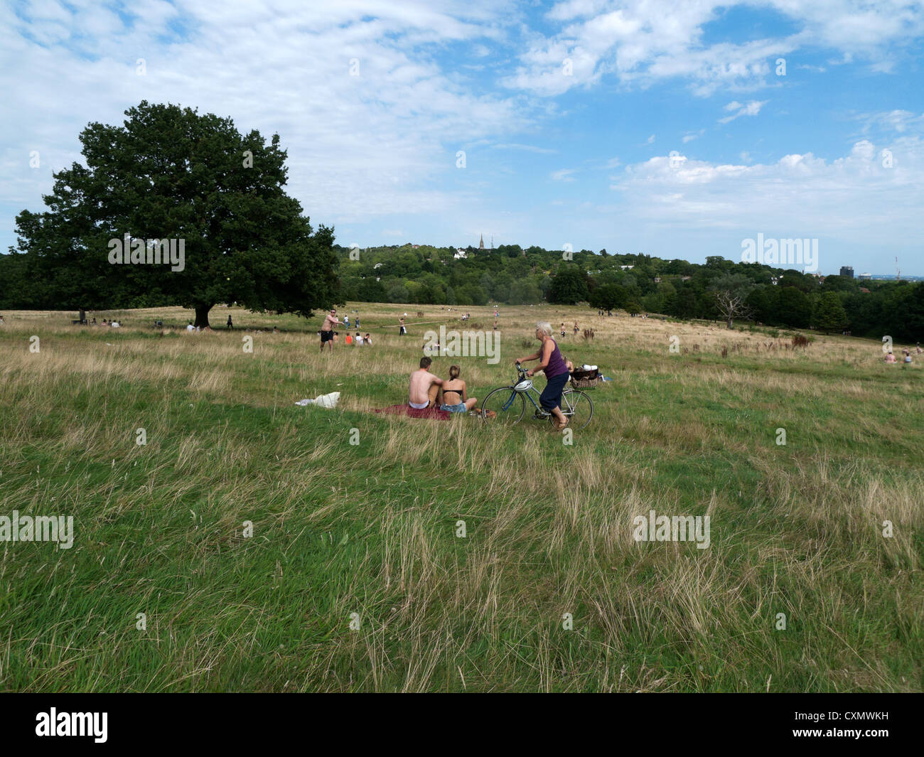 An elderly woman cyclist crossing Hampstead Heath with her bicycle in summer London NW3 England UK KATHY DEWITT Stock Photo