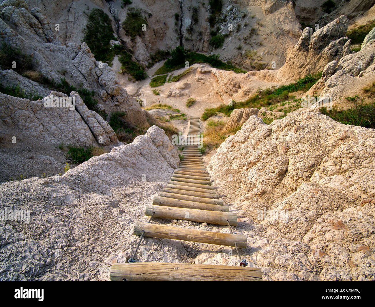 Ladder on Notch Trail. Badlands National Park, South Dakota. - Stock Image