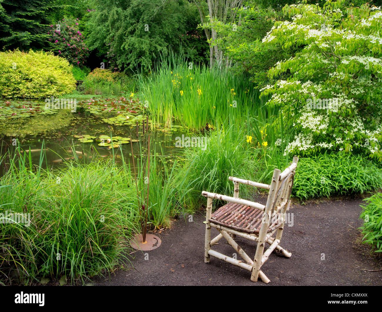 Wood chair and pond. Hughes Water Gardens, Oregon - Stock Image